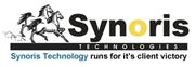 Web Designer in Synoris