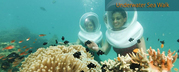 Andaman Islands & Havelock Island Tour packages, Andaman Tours