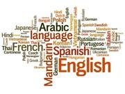Arabic Translation And Translator In Satna