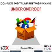 Web Design Company in Indore | Reliable Digital Expert