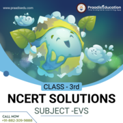 ncert solutions class 3 EVS
