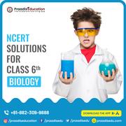 Biology ncert solutions for class 6
