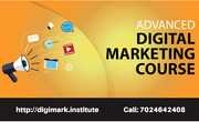 Website Designing And Development Course in Jabalpur