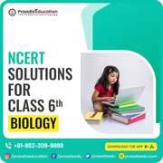 Class 6 biology Ncert Solutions
